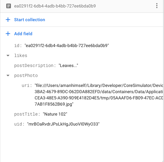 Firestore document with newly added uid